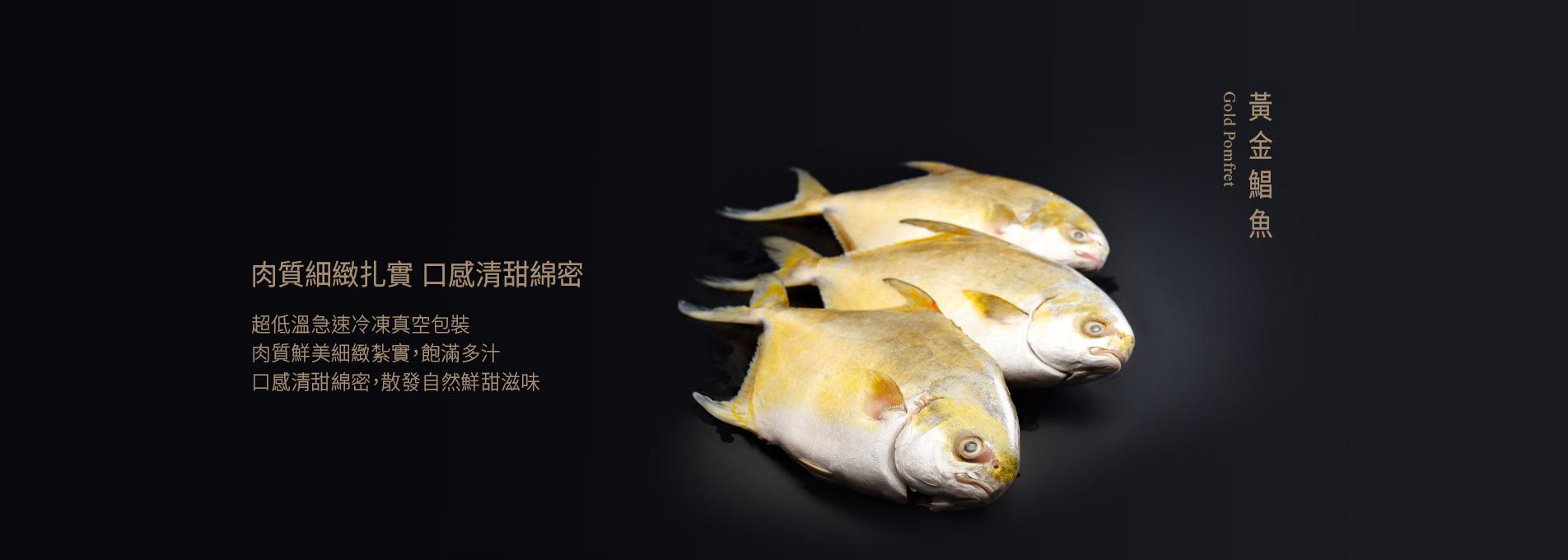 老協珍黃金鯧(特大)750g